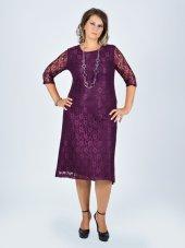 Nidya Moda Büyük Beden Sıfır Yaka Dantel Abiye Elbise 4036m