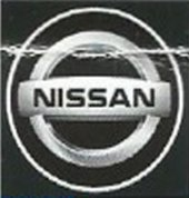Nissan Araç Kapı Altı Led Hayalet Logo 2li