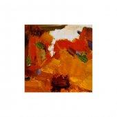 Orange Life 4 Parça Kanvas Tablo 70x70 Cm