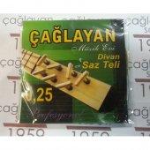 Gold 0.25 Divan Saz Teli