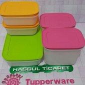 Tupperware Alaska 5li Set (Buzluk Seti) Hasgül