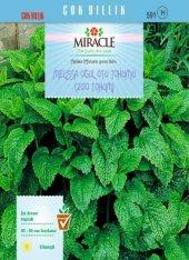 Miracle Melissa Oğul Otu Tohumu (200 Tohum) 20 Adet