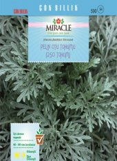 Miracle Pelin Otu Tohumu (250 Tohum) 50 Adet