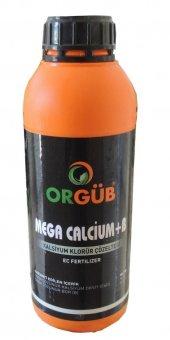 Mega Calcium Kalsiyum Bor Ağırlıklı Sıvı Gübre 1 Lt