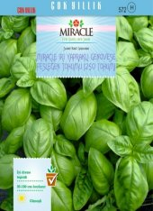 Miracle İri Yapraklı Genovese Fesleğen Tohumu (250 Tohum) 10 Adet