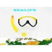 Sealife Azd6425 Maske & Şnorkel Seti