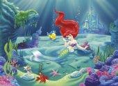 4 463 Komar Arielle (Deniz Kızı) Çocuk Duvar Kağıdı