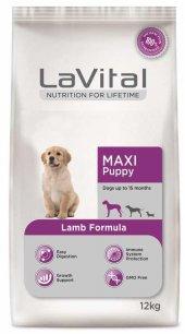 Lavital Maxi Puppy Kuzulu Açık Yavru Köpek Maması 4 Kg