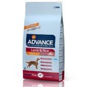 Advance Lamb Rice Kuzu Etli Yetişkin Köpek Maması 3 Kg