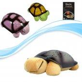 Türkçe Ninnili Kaplumbağa Gece Lambası (Kahverengi)