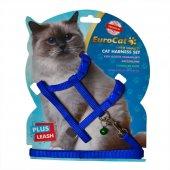 Kedi Göğüs Tasması Mavi