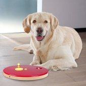 Köpek Zeka Eğitim Oyuncağı, Rulet 29cm 2.5cm