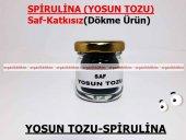 Yosun Tozu Spirulina (Mavi Yeşil Alg) 1000gr Doğal Taze