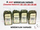 4 Adet Böğürtlen Yaprağı 4x30gr 1.kalite Taptaze
