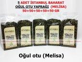 5 Adet Oğul Otu Yaprağı (Melisa) 5x50gr 1.kalite Taptaze