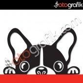 Otografik Bagajdan Bakan Köpek Oto Sticker