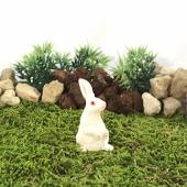 Bigpratic Teraryum Malzemeleri Ayakta Tavşan