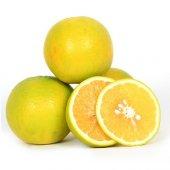 Tatlı Limon (18 Kg)