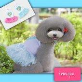 Twinkle Star Tütülü Köpek Elbisesi Mavi