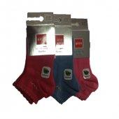 şirin Kız Çocuk Bambu Dikişsiz Kısa Çorap 6 Lı Paket Asorti