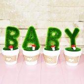 Dekoratif Mini Saksı Baby