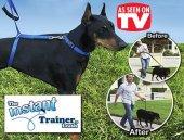 ınstant Trainer Leash Köpek Eğitim Tasması