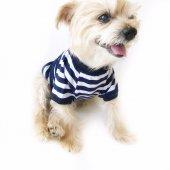 Navy Strıpes Oval Yaka Tişört Summer T By Kemique Köpek Kıyafet