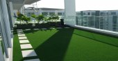 Balkona Çim Halı 7 Mm 1.5x23 34.5m2 Çim Halı Ucuz Çim Halı Yeşil Suni Çim Halı Suni Çim Halı Döşeme