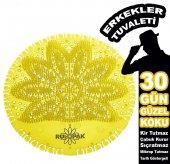 Rulopak 10 Ad. Pisuvar Süzgeci Koku Giderici (Limon)