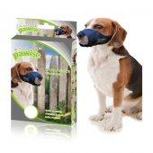 Pawise Ayarlanabilir Köpek Ağızlığı S (Pws3012 S)