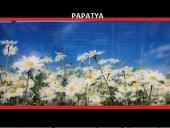 Evsa Home Dekoratif Ofis Salon Cam Orta Sehpa Papatya 5265