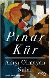 Akışı Olmayan Sular Pınar Kür