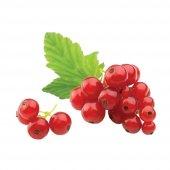 Mutlu Sebzeler Frenk Üzümü Red Berry 125gr'lık 1 Paket