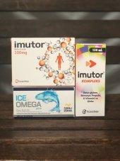 Ametis Ice Omega Plus İmutor Beta Glukan İmutor Şurup