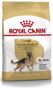 Alman Çoban Köpekleri İçin Royal Canin Köpek Maması 11kg