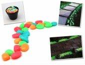 Renkli Fosforlu Çakıl Taşları 5 Renk (50 Adet)