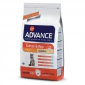 Advance Somonlu Ve Pirinçli Kedi Maması 3 Kg