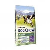Dog Chow Kuzu Etli Yetişkin Köpek Maması 14 Kg