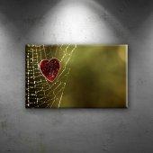 Kalp, Doğa Örümcek Ağı Aşk & Sevgi Dekoratif Canvas Tablo