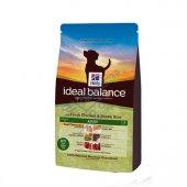 Hills Ideal Balance Tavuklu Esmer Pirinçli Köpek Maması 12 Kg