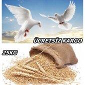 Buğday 25 Kg Tane Buğday Doğal Buğday Dane Buğday Yemeklik Buğday Tohumluk Buğday Güvercin Yemi