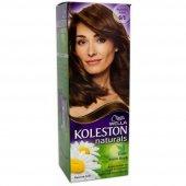 Koleston Naturals Kit 6.1 Büyüleyici Kahve