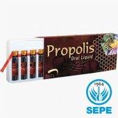 Propolis Extract Ekstrakt Likit 300mg X 10ml X 10 ...