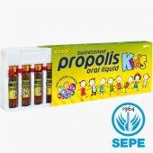 Propolis Kids 10 Ampul X 10 Ml X 150 Mg Vitaminli ...