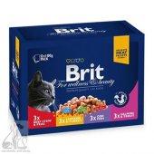 Brit Premium Pouch Kedi Maması Etli Ve Balıklı Çeşitler 12x100 Gr