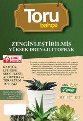 Zengınleştırılmış 5 Lt Saksı Yüksek Drenajlı Toprak Lıthops, Succulent, Aloevera Ve Teraryum Toprağı