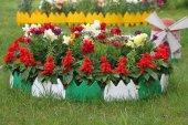 Bahçe Çiti Dekoratif Renkli 17 Cm Uzunluk X 8 Adet 136 Cm