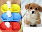 Kedi Ve Köpek İçin Otomatik Su Ve Mama Kabı Mama Kabı Suluklu Kap