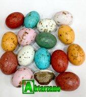 Yumurta Draje Çikolata Renkli 500gr.