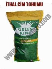 Green King 3m Siesta İthal Tuza Dayanıklı Karışım Çim Tohumu 5kg